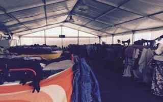 Notizie locali: migranti  venezia  clandestini