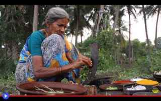 Gastronomia: cucina  gastronomia  india  curry
