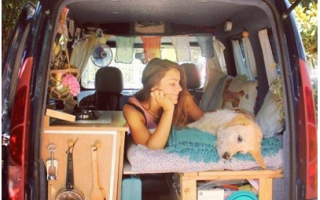 Viaggi: viaggia  furgone  marina  odie  cane