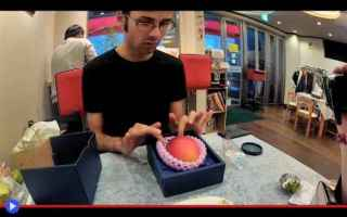 Gastronomia: frutta  cibo  gastronomia  giappone
