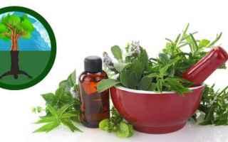 Salute: android omeopatia salute piante