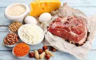 proteine  nutrienti