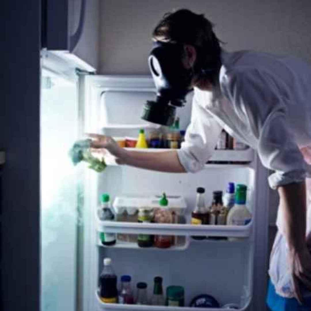 Rimedi casalinghi contro i cattivi odori e la muffa muffa - Rimedi contro la muffa in casa ...