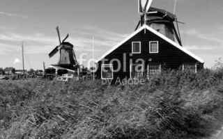 Viaggi: olanda  mulini  mulini a vento