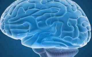 Psiche: cervello  circonvoluzione fusiforme