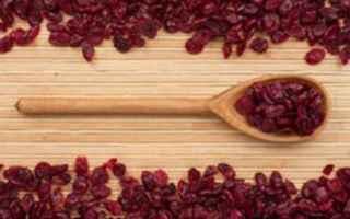 snack salutare  mirtillo rosso  semi