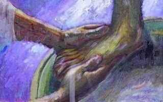 Religione: religione  cristianesimo  cattolicesimo