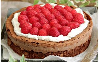 Ricette: torta  cioccolato  no glutin