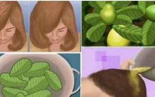 caduta dei capelli  guava
