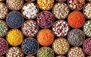 Alimentazione: proteine vegetali  proteine  vegan