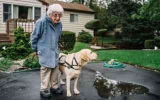 Animali: anziana  amicizia  cane