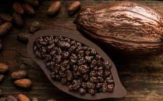 Alimentazione: cioccolato  cacao  effetti benefici