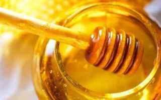 Alimentazione: miele