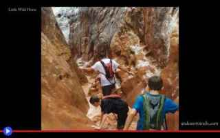 Ambiente: canyon  stati uniti  deserto  utah