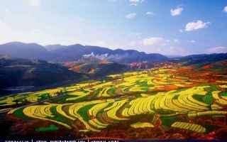 Viaggi: yuxi cina