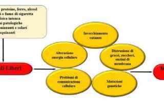 nutraceutica  nutrigenomica