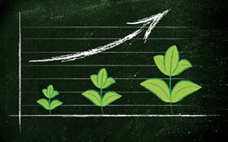 Economia: bilancio  sostenibilità  decreto