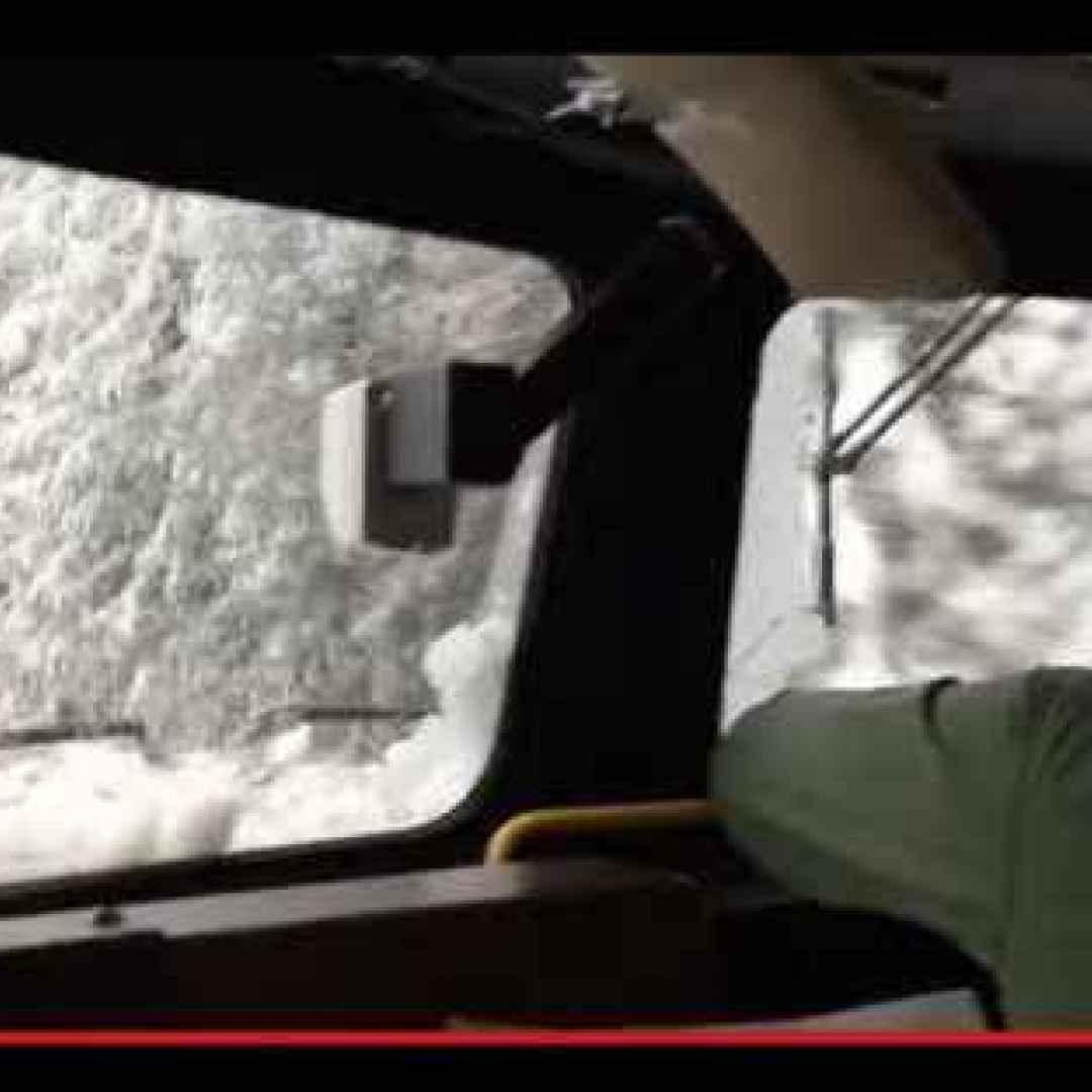 treni  trasporti  neve  inverno  alberi