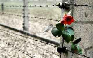 olocausto  memoria  selfie  social