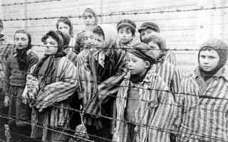 Storia: shoah  giornata della memoria  olocausto