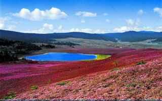 Viaggi: guida yunnan deqen tibet