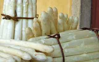 Gastronomia: sagra  bibione  asparago bianco  mare