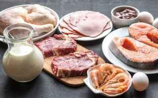 Alimentazione: proteine  dieta  eccesso proteine