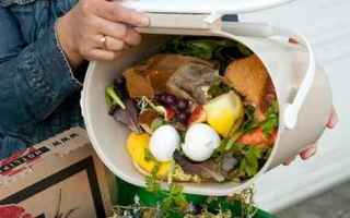 Milano: sprechi alimentari  alimentazione  luiss