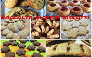 Ricette: biscotti  dolci  colazione