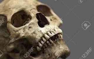 Storia: cimitero  filistei  archeologia