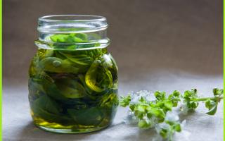 Ricette: cucina  ricetta  basilico  erba  conserv
