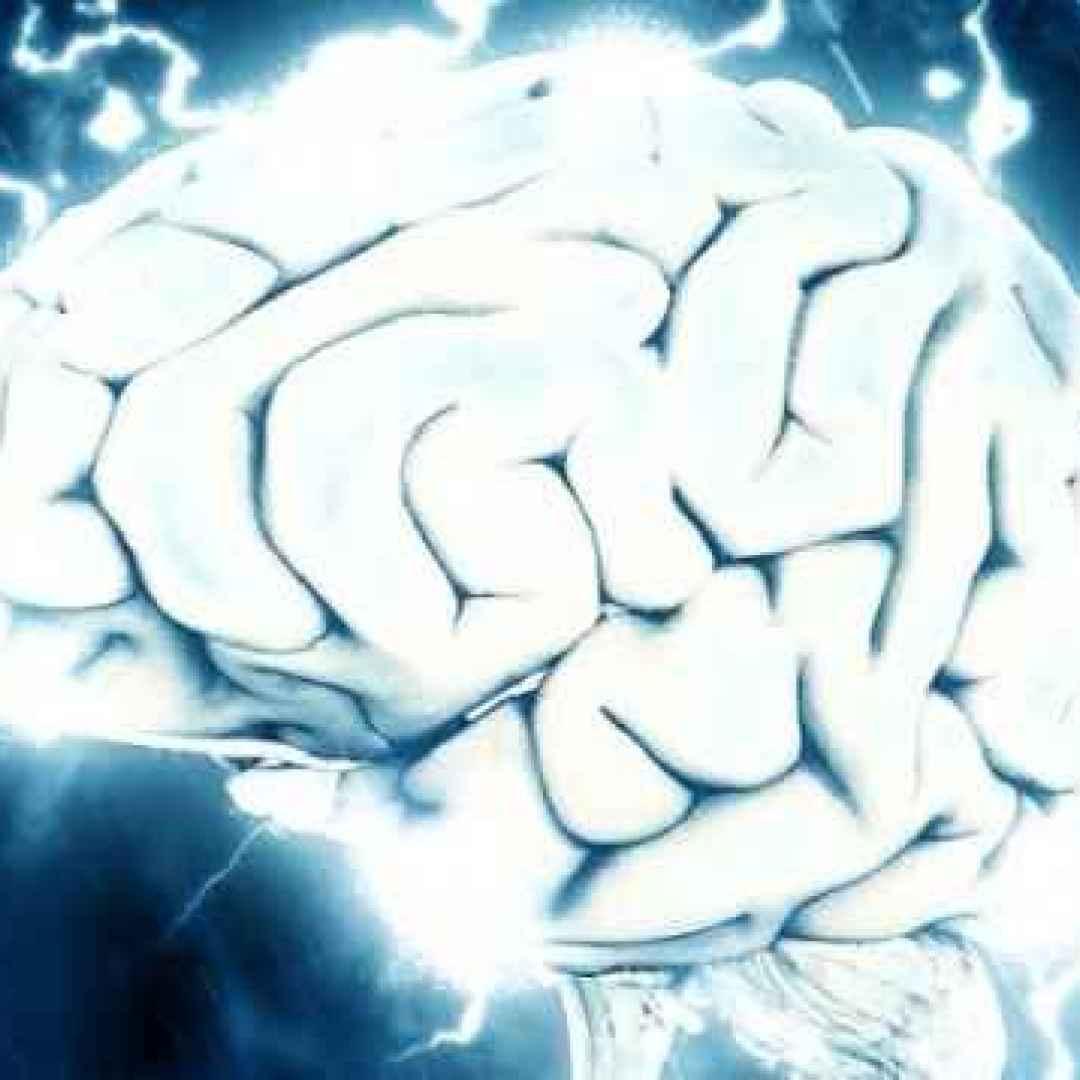 Il cervello cresce anche in età adulta