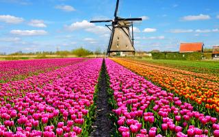 L'Olanda nell'immaginario collettivo è vista come una nazione liberissima, molto tollerante, da