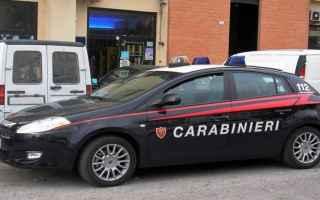 Roma: cane  bambina  aggredita  carabinieri