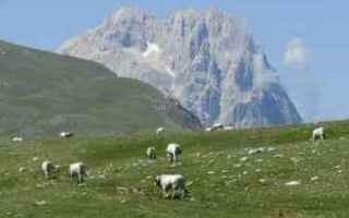 Viaggi: abruzzo  vacanze  montagna