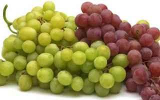 alzheimer  uva