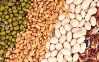 Alimentazione: vegan proteine alimentazione animali veg