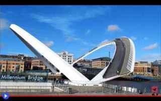 ponti  newcastle  strutture  tecnologia  architettura