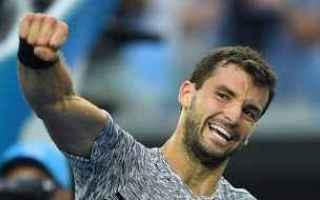 Tennis: tennis grand slam dimitrov sofia