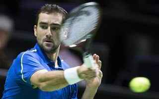 Tennis: tennis grand slam cilic rotterdam