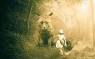 Animali: canzoni per bambini  violenza  animali