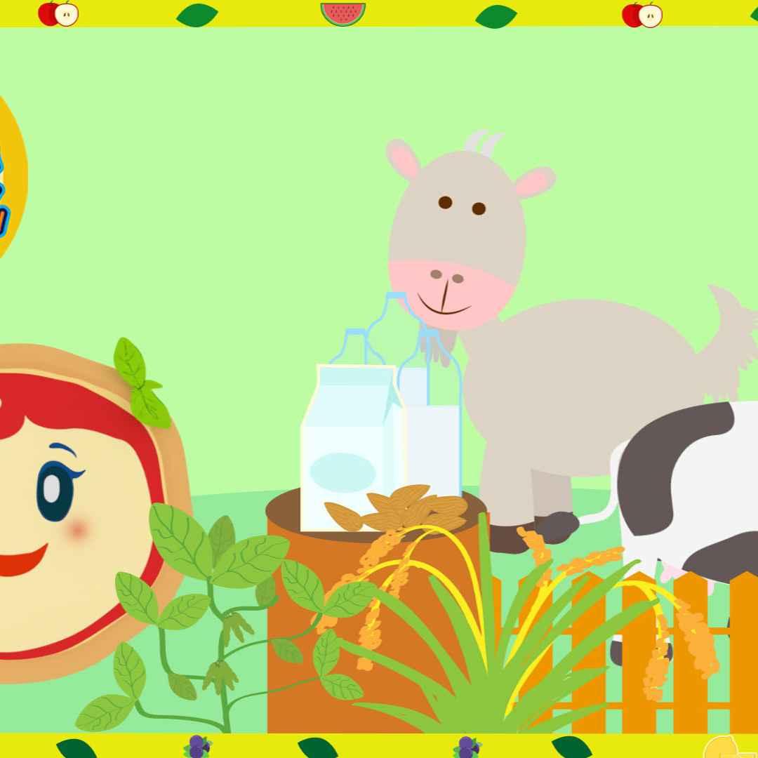 Video divertenti cartoni animati e giochi per bambini