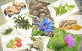 Salute: benessere  salute  dimagrire  rimedi