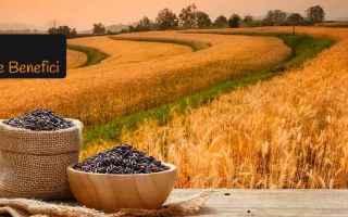 Alimentazione: riso riso nero cucina riso integrale