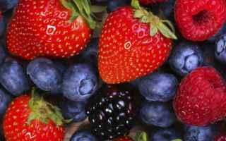 Alimentazione: mind diet  dieta  cervello