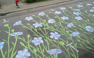Arte: arte  street art  natura