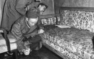 Storia: adolf hitler eva braun nazismo
