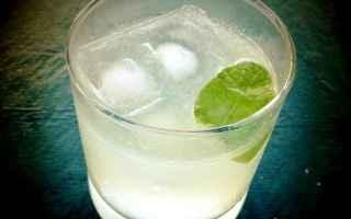 Gastronomia: barman  cocktail  gin