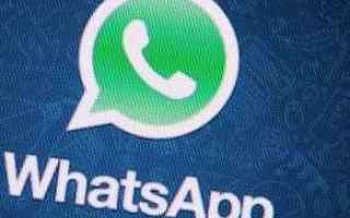 App: whatsapp  smartphone  internet