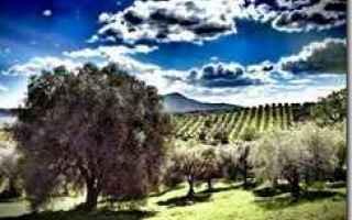Viaggi: toscana  agriturismo  montebelli